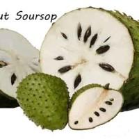 Soursop-Annona-muricata