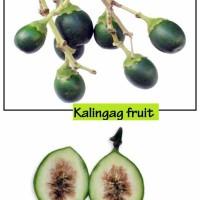 Kalingag